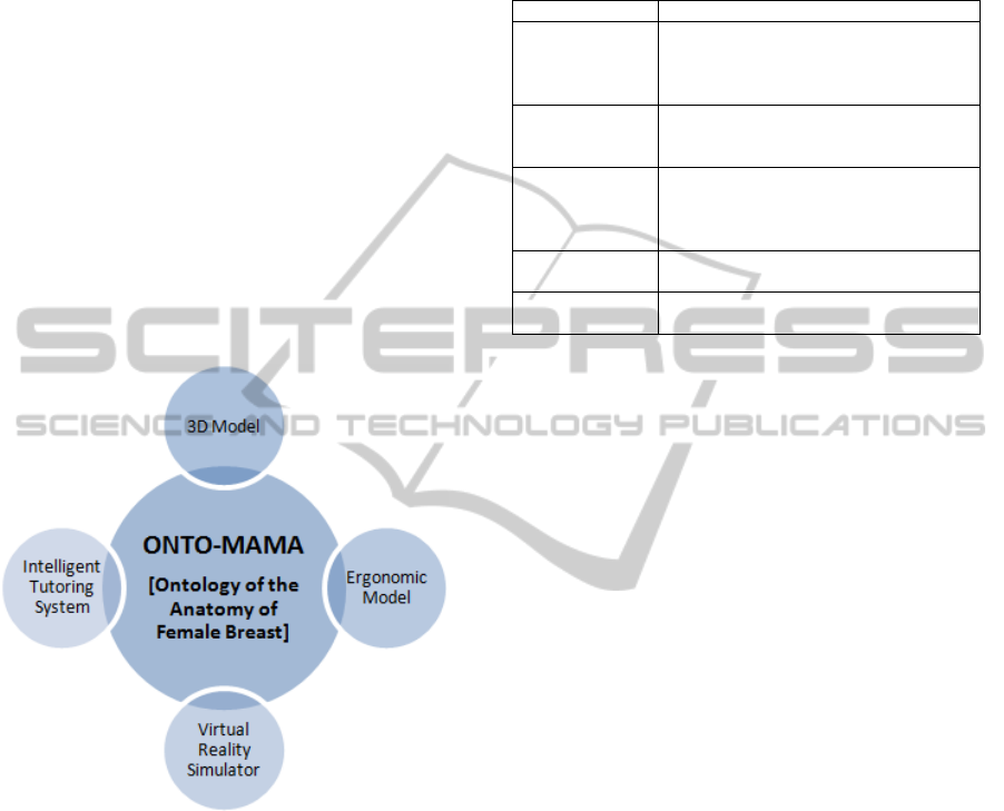 Onto Mama An Unified Ontology And 3d Graphic Model Of The
