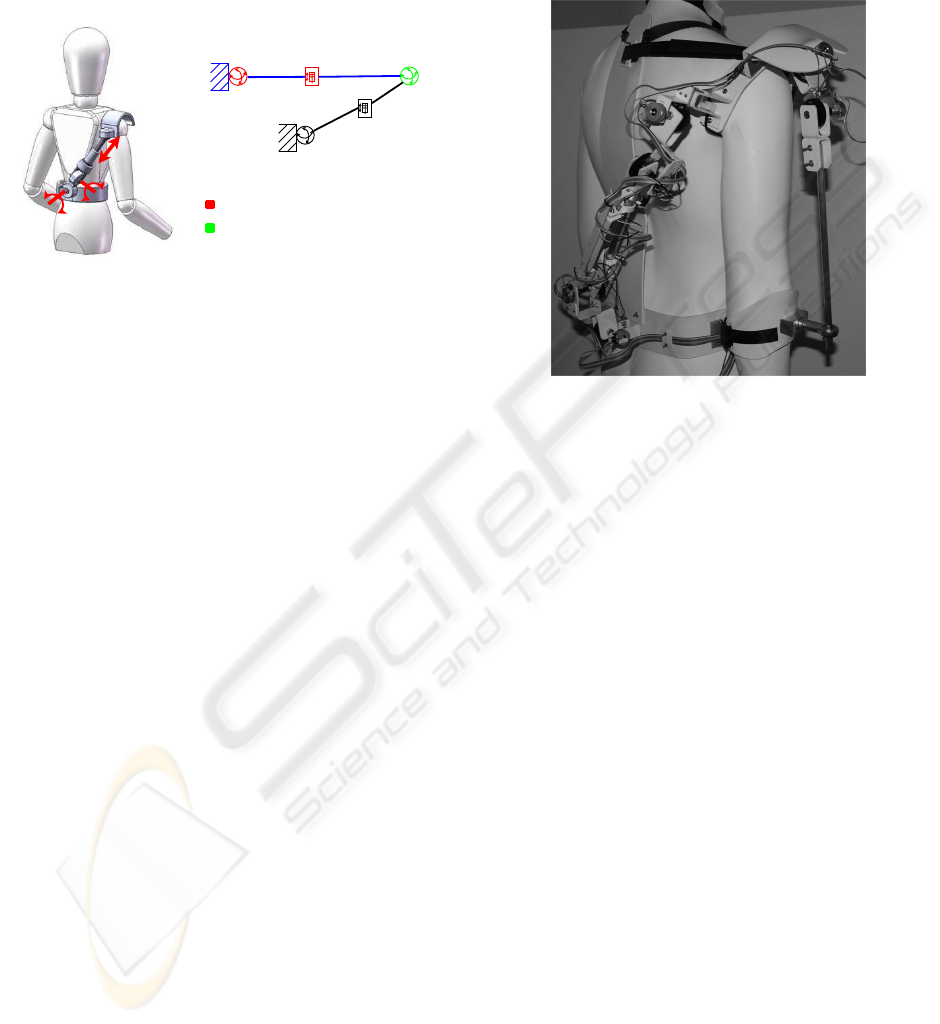 design of a bio-inspired wearable exoskeleton for applications