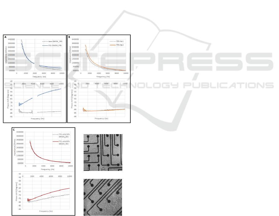 In-vitro Modeling of Electrode-tissue Parameters