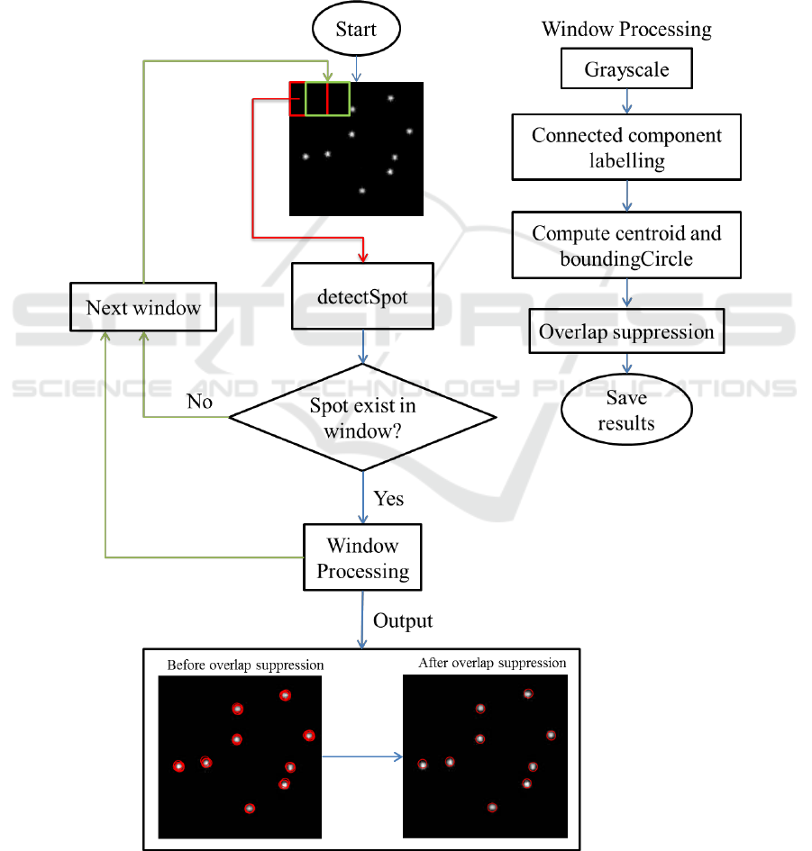 Spot Detection in Microscopy Images using Convolutional Neural
